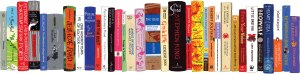 idealbookshelfBIGGEST